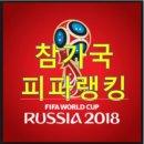 2018 러시아 월드컵 출전국 피파랭킹 총정리