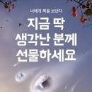 <b>배달의 민족</b> 선물하면 만원 쿠폰 준다‼️ (여혐주의)