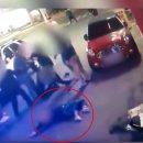 대구 부부 집단폭행 경찰 논란 이유 청와대 청원주소 (영상)