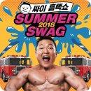 2018 싸이 흠뻑쇼 서울 막콘 후기
