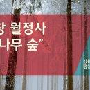 """평창 """"월정사 전나무숲"""""""