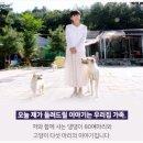 이용녀 유기견 대모 케어 박소연 안락사 비판