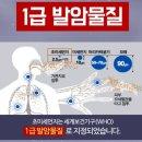 면역항암제 올바로 이해하기 (feat. NK세포, T세포)