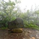 [금산] 남해 금산 우중산행