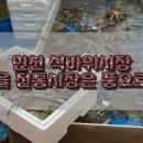 인천 석바위시장 가을 전통시장은 풍요로워