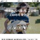 박소연 지시로 개, 고양이 230마리 죽였다