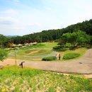서울근교 나들이 용인농촌테마파크