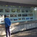 주중 北대사관, 시진핑·트럼프 빼고 문재인·김정은 사진 도배