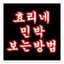 효리네 민박2 실시간