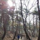 괴산 문경 가볼만한곳 :: 고모산성 (오미자터널)