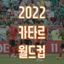 2022 카타르월드컵 유망주 시차