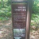 2018년 2박3일 울릉도+독도 여행