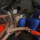 멕시코 지진 후 활동하는 구조견들