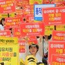"""사립유치원 집단휴업 대신 머리 숙여, 여론 """"집단이기주의"""" 싸늘"""