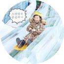 스파밸리봅슬레이 ▒ 스릴만점, 동영상 ♪ :: 대구눈썰매