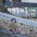 [부산여행] 영도 청학동 가장 높은 곳 해돋이마을 벽화길과 야경