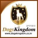 <b>강아지</b><b>왕국</b> '나비야사랑해' 바자회 후원참여소식!!