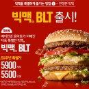 맥도날드 빅맥 BLT 한정판 출시! 저도 한번 먹어봤습니다