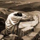 사순절, 종려주일 대표 기도문 13