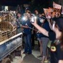 동물권단체 '케어'의 박소연 대표, '구조동물 안락사' 파문 직원들도 몰랐다?