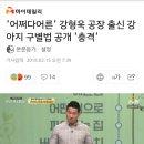 '어쩌다어른' 강형욱 공장 출신 강아지 구별법 공개 '충격'