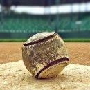 이정후 야구 정보