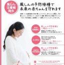 일본 풍진 유행