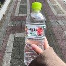 180221( 수 ) -22 ( 목 ) : 김다현 고통주간 restart!