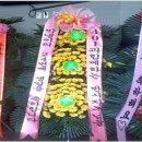 SS401, 썩콩과 네박자의 김현중 악플