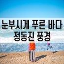 정동진 해수욕장 외국인도 반한 푸른빛 동해