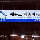 #143 수요미식회 해물탕
