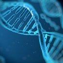 유전공학적 조작과 정신분석 문제