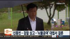 롯데 신동빈-검찰 모두 상고..'뇌물공여' 사건 대법서 결론