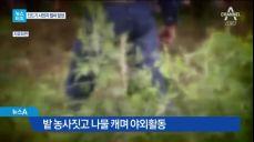 [뉴스터치]백신도 없는데…'살인 진드기'의 습격