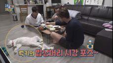 [이경이네] 어른들 식사하시는데 고양이 바닥에 눕눕♥